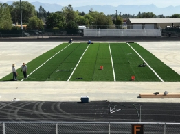 8-21-17 first 4 rolls of turf (1)